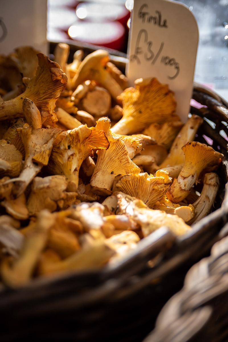 Basket of yellow mushroom sunbathing in sunlight