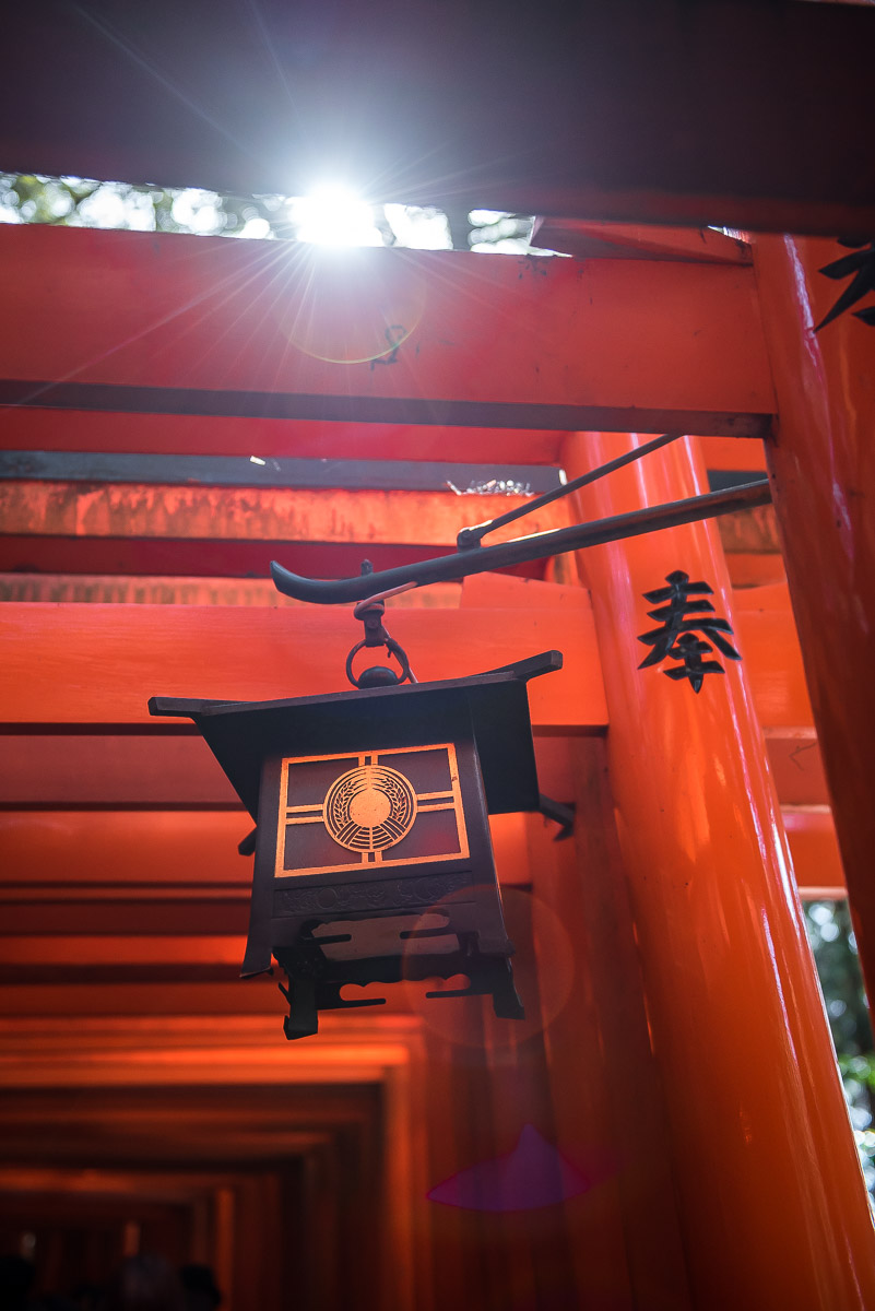 Detail of a Japanese lantern amongst red torii gates