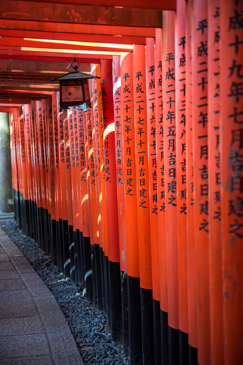 Tunnel of red torii gates in a temple in Japan