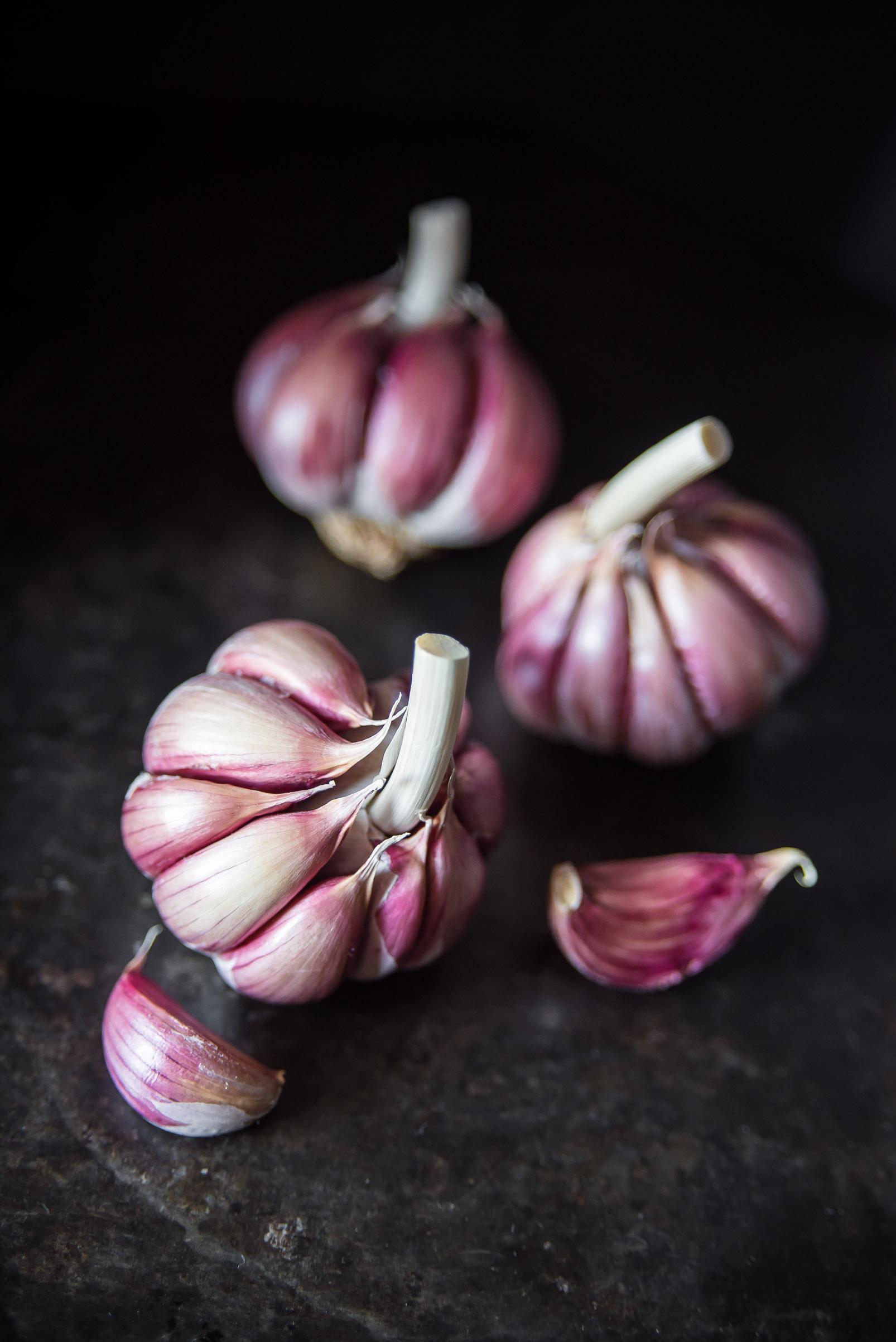 Close up of a beautiful purple garlic bulb on a dark background