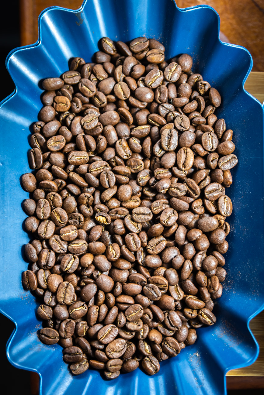 blue tray with light roasted coffee beans