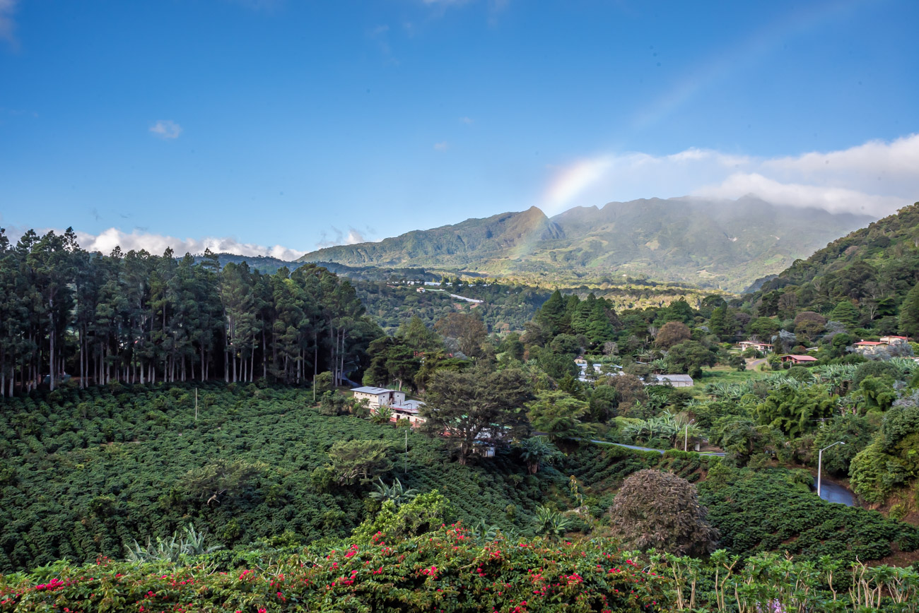 Rainbow over coffee plantations