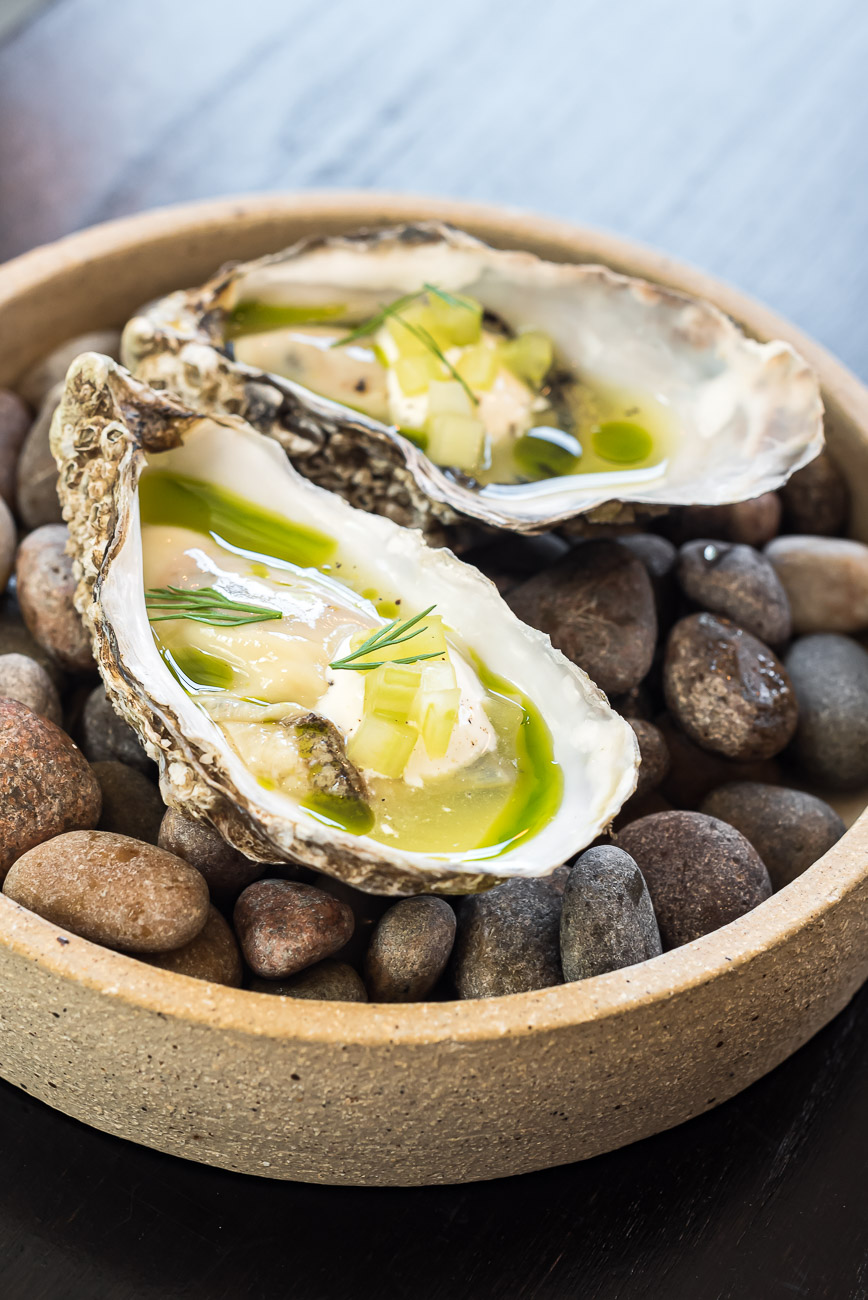 Oysters on a plate of rocks
