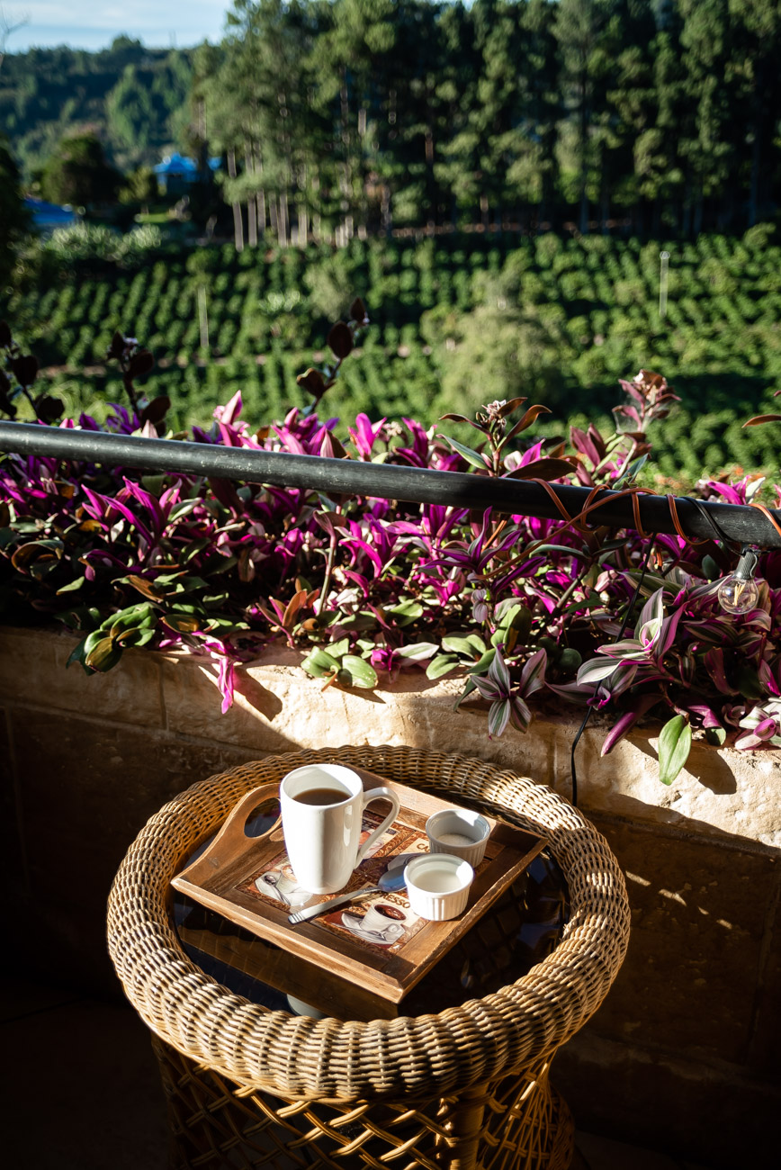 Speciality coffee served on a patio overlooking coffee plantation