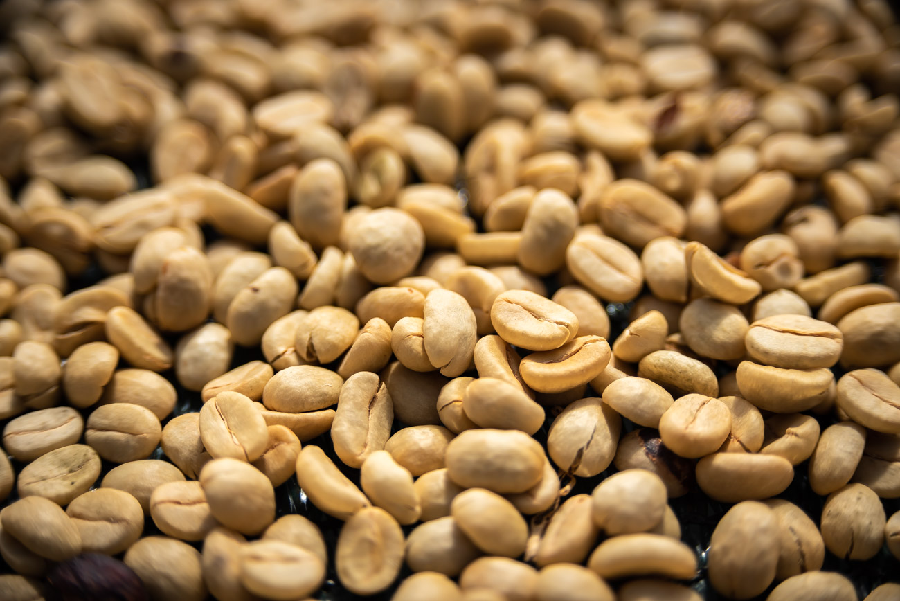 Dried and peeled coffee beans